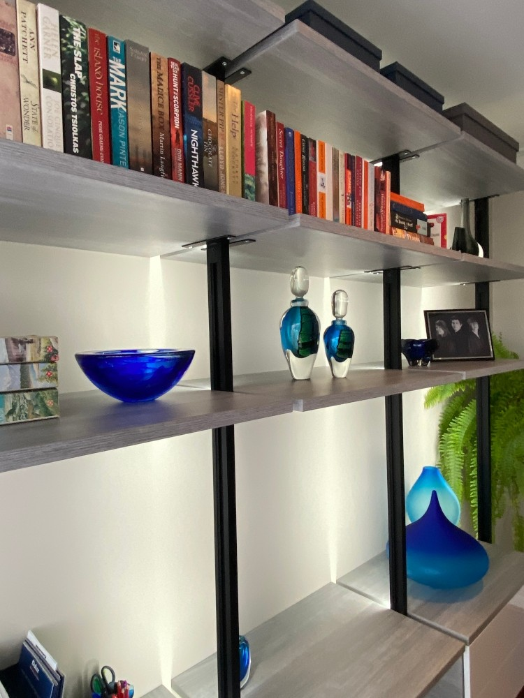 Elite Shelving System in The Lounge Room